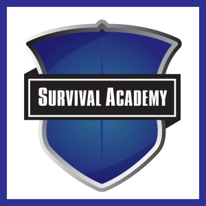 S Academy